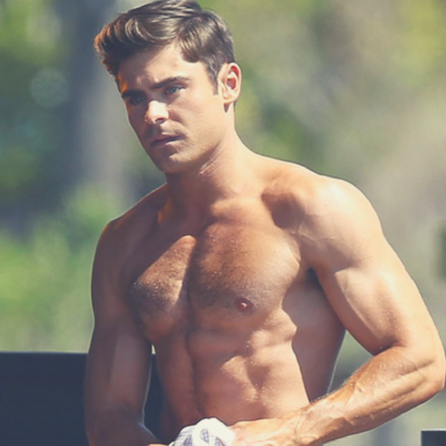 Zac Efron Gay Photo 107