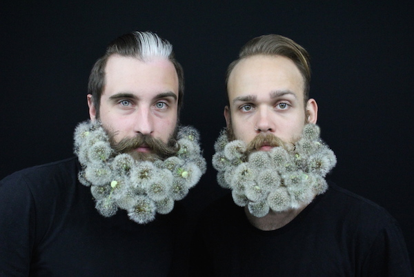 the-gay-beards-Dandelions